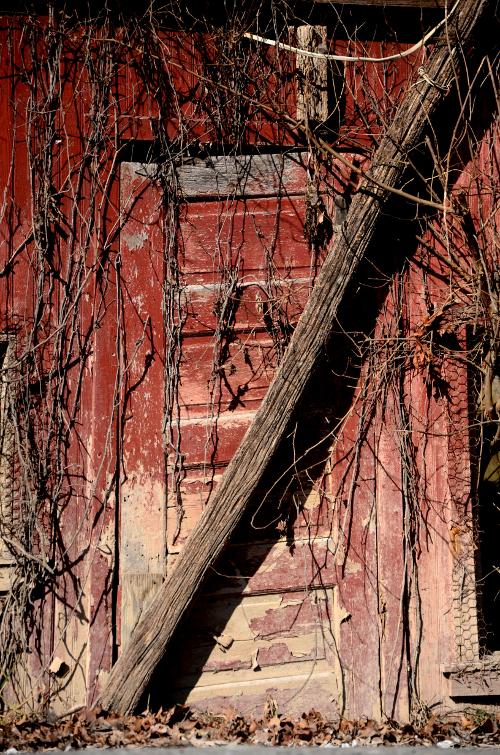 5-sidedoor_0445