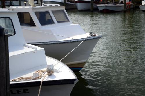 5-rafting_6932