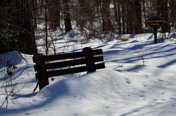 6-bench_8986